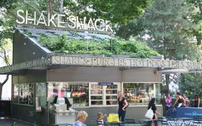 Shake Shack Keto Options for Low Carb Diets