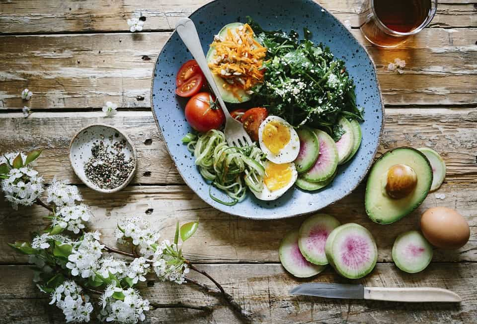 keto diet ideas for no meat ethical diets